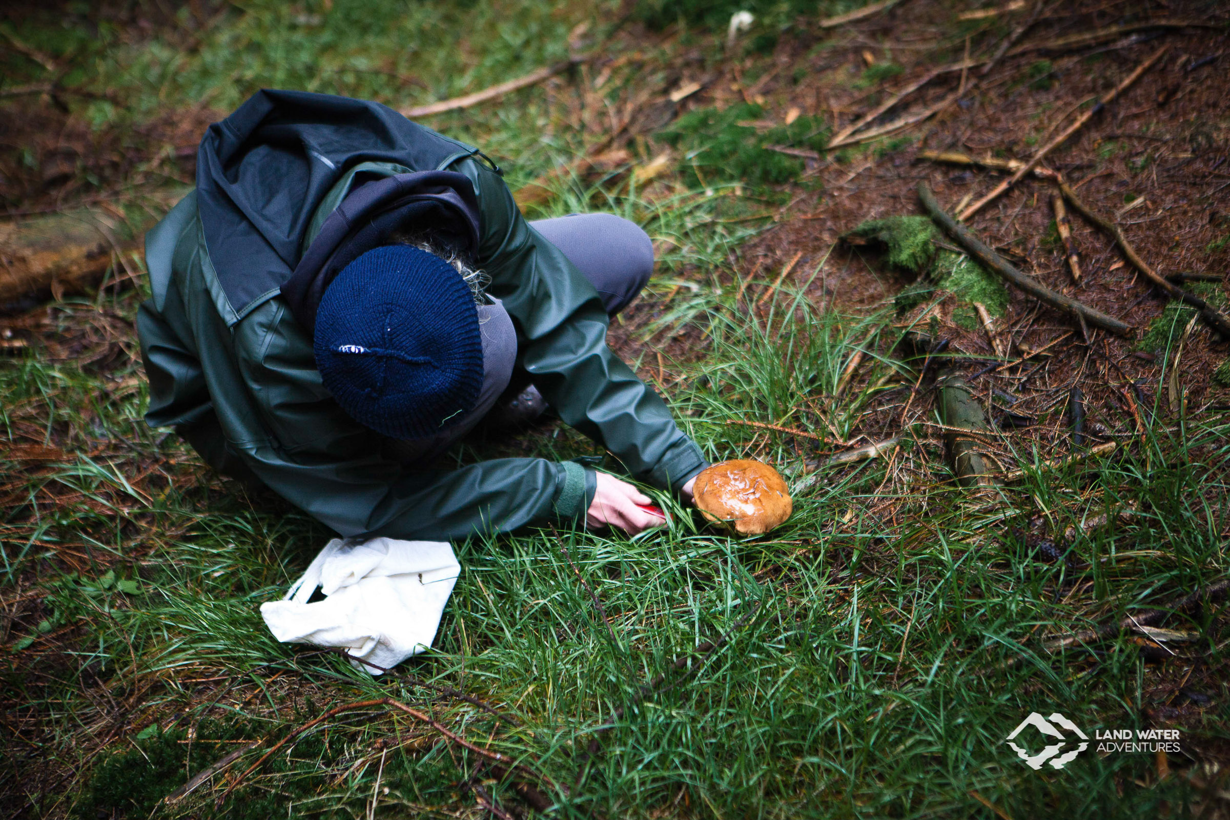 Mushroom harvesting in the Thuringian Forest © Land Water Adventures