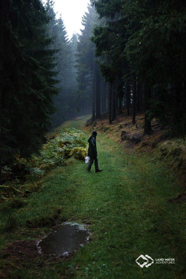 Pilzernte im Thüringer Wald © Land Water Adventures
